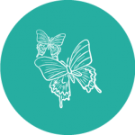Two butterfly icon