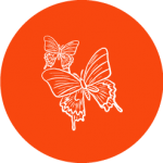 Conscious Solidarity icon two butterflies